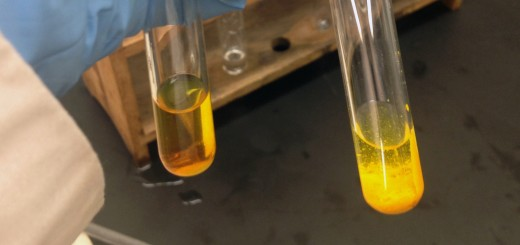 Testing for aldehydes and ketones with 2,4-DNPH