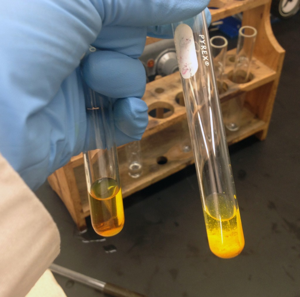 Photo showing a positve and negative result using the 2,4-dinitrophenylhydrazine test for aldehydes and ketones
